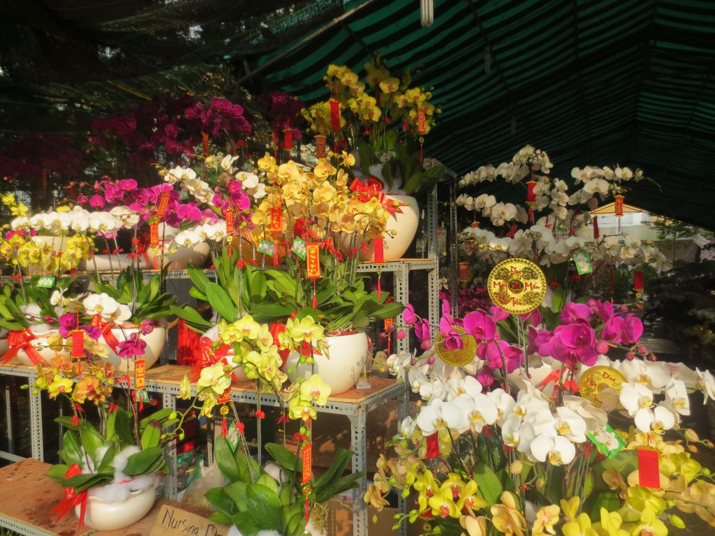 23/9 Park flower market District 1, Saigon, HCMC