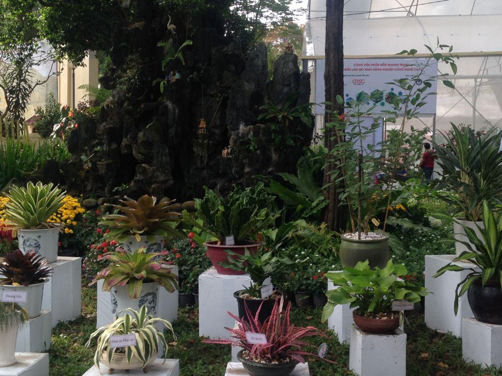 Minature gardens and plants display in Tao Dan Park
